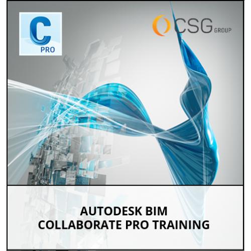 Autodesk BIM Collaborate Pro Training