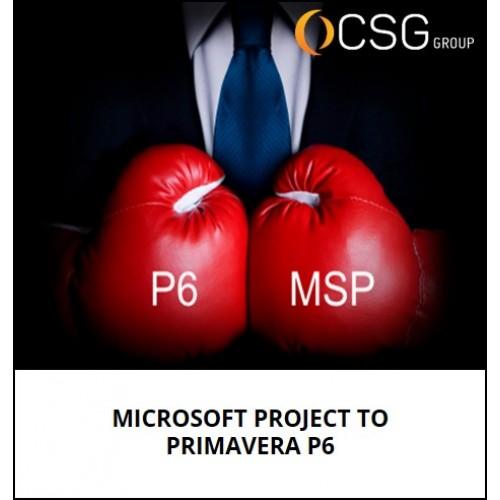Microsoft Project To Primavera P6