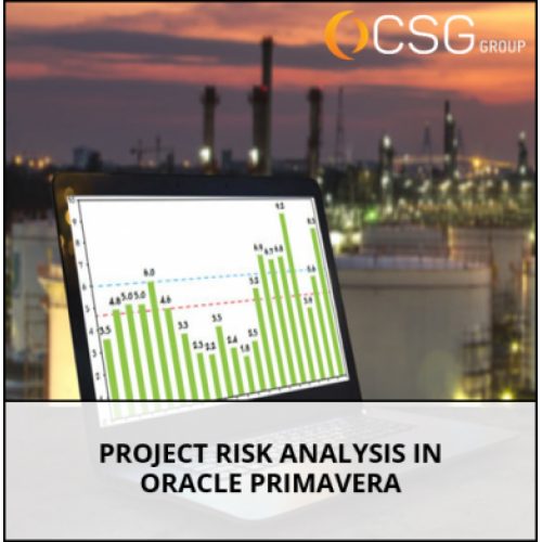 Project Risk Analysis in Oracle Primavera